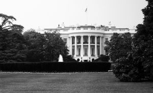 1105753_the_white_house.jpg